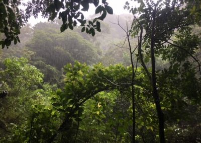 Hiking In Panama